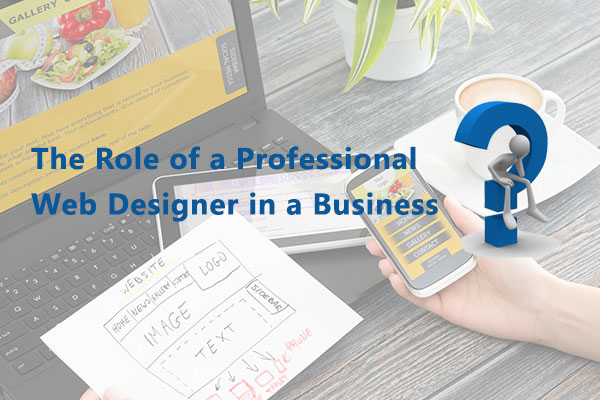 The Role of a Professional Web Designer in a Business